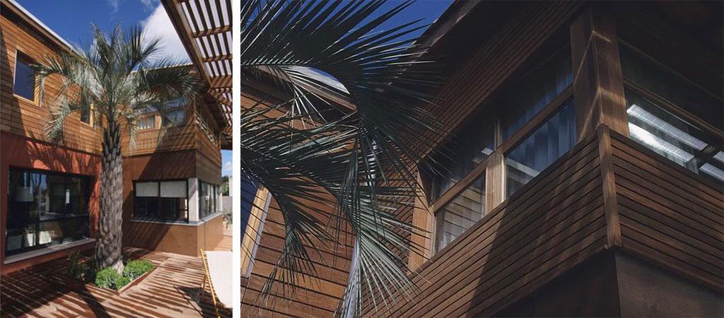facade palmier maison architecte